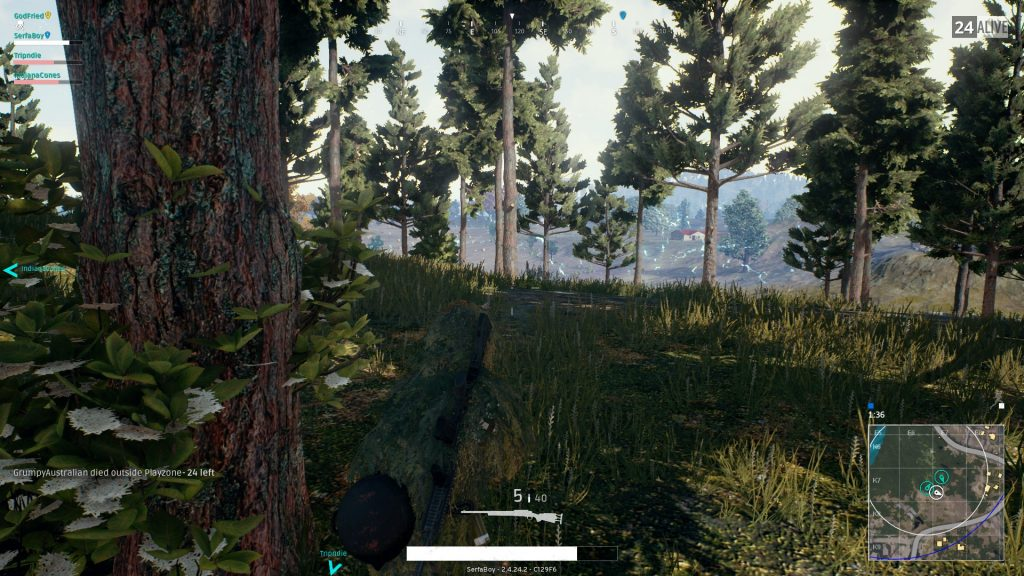 PUBG Forest